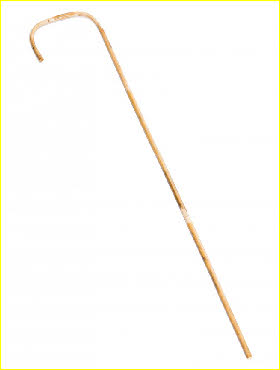 Traditional school cane for hard CP